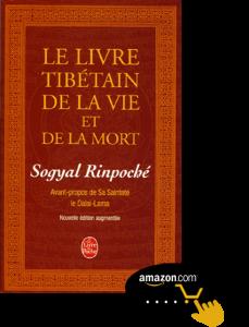Le-livre-tibétain-de-la-vie-et-de-la-mort,-de-Sogyal-Rinpoché