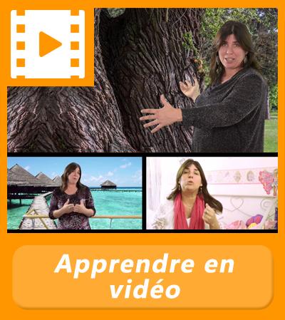 Formation vidéo en énergétique avec Mary Laure Teyssedre
